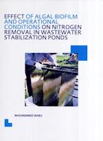 Effect of Algal Biofilm and Operational Conditions on Nitrogen Removal in Waste Stabilization Ponds