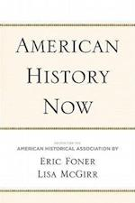 American History Now (Critical Perspectives on the Past)