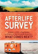 Afterlife Survey