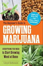 Beginner's Guide to Growing Marijuana