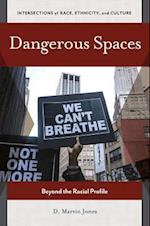 Dangerous Spaces: Beyond the Racial Profile (Intersections of Race Ethnicity and Culture)