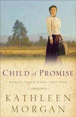 Child of Promise (Brides of Culdee Creek Book #4) (Brides of Culdee Creek)
