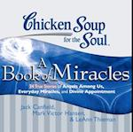 Chicken Soup for the Soul: A Book of Miracles - 34 True Stories of Angels Among Us, Everyday Miracles, and Divine Appointment