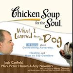 Chicken Soup for the Soul: What I Learned from the Dog - 34 Stories about Overcoming Adversity, Healing, and How to Say Goodbye