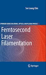 Femtosecond Laser Filamentation (Springer Series on Atomic, Optical, and Plasma Physics, nr. 55)