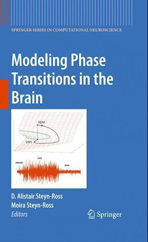 Modeling Phase Transitions in the Brain