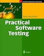 Practical Software Testing (Springer Professional Computing)