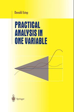 Practical Analysis in One Variable