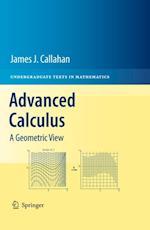 Advanced Calculus af James J. Callahan