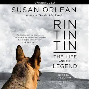 Rin Tin Tin af Susan Orlean