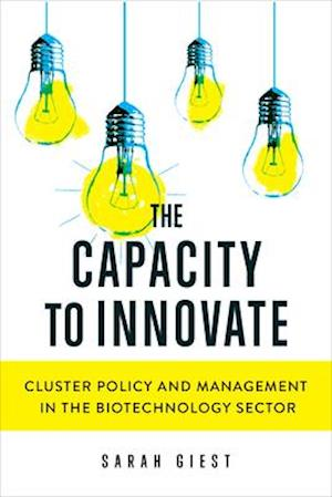 The Capacity to Innovate
