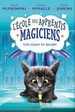 L' Ecole Des Apprentis-Magiciens