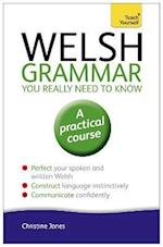 Welsh Grammar You Really Need to Know: Teach Yourself