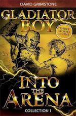 Into the Arena af David Grimstone