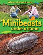 Where to Find Minibeasts: Minibeasts Under a Stone af Sarah Ridley