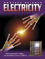 Amazing Science: Electricity (Amazing Science, nr. 2)