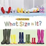 My First Maths: What Size Is It?
