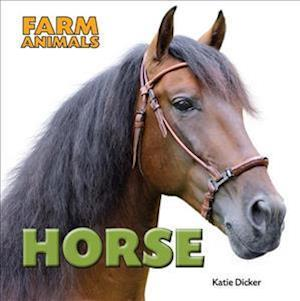 Bog, hardback Horse af Katie Dicker