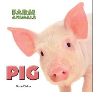 Farm Animals: Pig