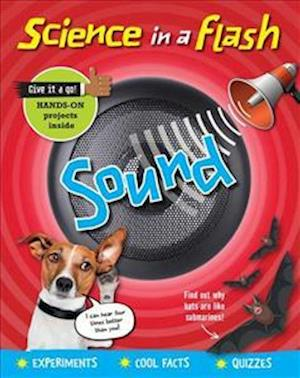 Science in a Flash: Sound