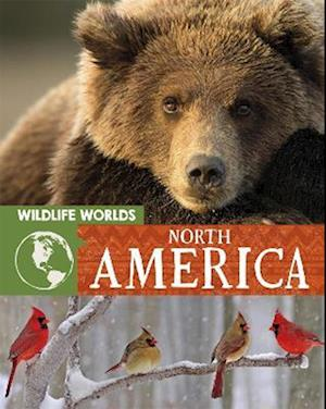 Wildlife Worlds: North America