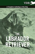 The Labrador Retriever - A Complete Anthology of the Dog af Various