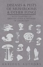 Diseases and Pests of Mushrooms and Other Fungi - With Chapters on Disease, Insects, Sanitation and Pest Control