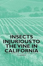 Insects Injurious to the Vine in California