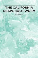 The California Grape Root-Worm