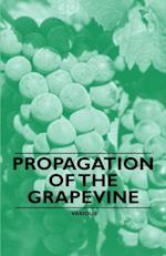 Propagation of the Grapevine