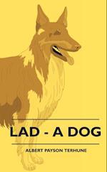 Lad - A Dog af Albert Payson Terhune