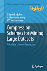 Compression Schemes for Mining Large Datasets (Advances in Computer Vision and Pattern Recognition)