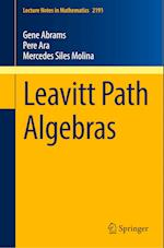 Leavitt Path Algebras (Lecture Notes in Mathematics, nr. 2191)