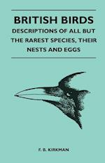 British Birds - Descriptions of All But the Rarest Species, Their Nests and Eggs af Frederick Bernulf Beever Kirkman, F. B. Kirkman