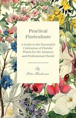 Practical Floriculture - A Guide to the Successful Cultivation of Florists' Plants for the Amateur and Professional Florist