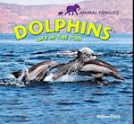 Dolphins (Animal Families)