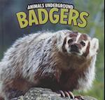 Badgers (Animals Underground)