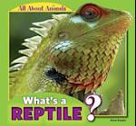 What's a Reptile? (All About Animals)