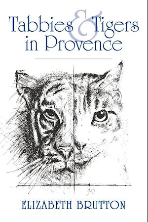 Tabbies and Tigers in Provence