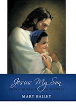 Jesus My Son: Mary's Journal of Jesus' Ministry