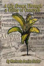 A Lily Grows Through a Valley of Concrete
