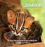 Zooborns Cats! (Zooborns)