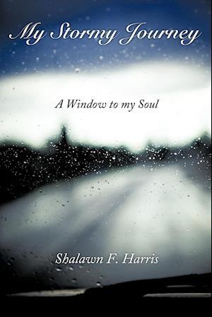 My Stormy Journey