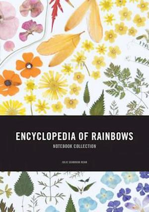 Bog, paperback Encyclopedia of Rainbows Notebook Collection af Julie Ream