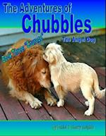 Adventures of Chubbles the Angel Dog, Book Three: 'Courage'