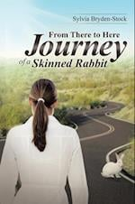 From There to Here-Journey of a Skinned Rabbit