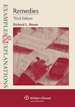 Examples & Explanations (Examples & Explanations)