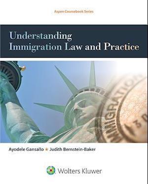 Bog, paperback Understanding Immigration Law and Practice af Ayodele Gansallo