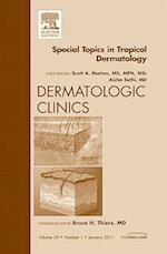 Special Topics in Tropical Dermatology, An Issue of Dermatologic Clinics (The Clinics, Dermatology, nr. 29)