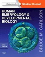 Human Embryology and Developmental Biology Elsevieron VitalSource